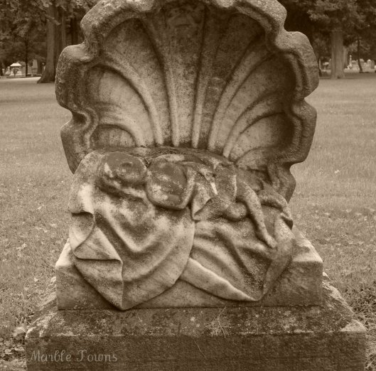 Oak RIdge Cem-scallop shell